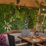 Tường xanh trong nhà hàng